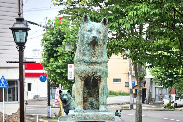 秋田で不動産投資をするなら秋田市がおすすめ!理由と注意ポイントを紹介!