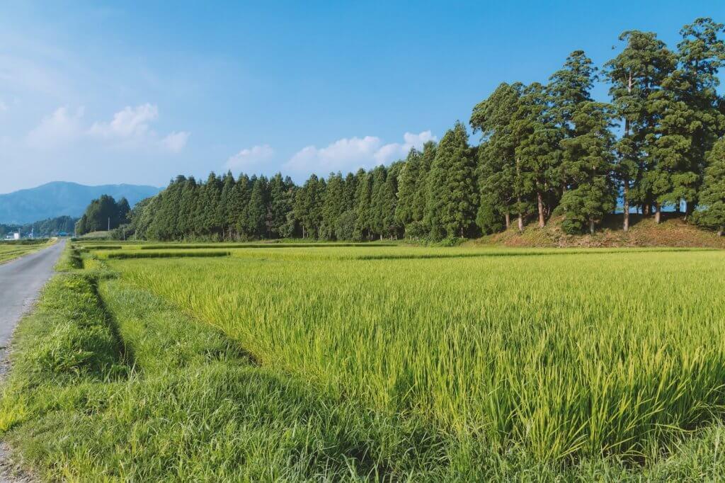 田舎で不動産投資をする際の物件の選び方